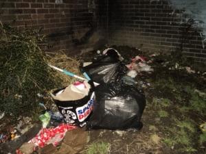 Cottingley rubbish