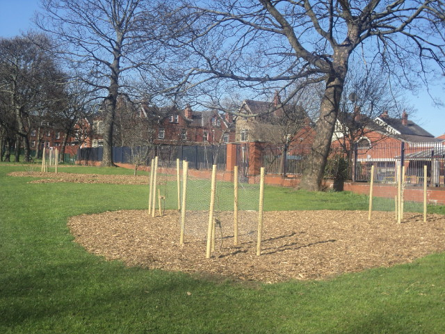 community orchard in Cross Flatts Park